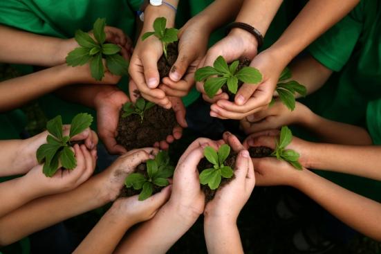 educacion-ambiental-niños